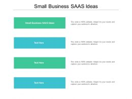 Small Business SAAS Ideas Ppt Powerpoint Presentation Model Show Cpb