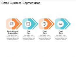 Small Business Segmentation Ppt Powerpoint Presentation Gallery Designs Cpb