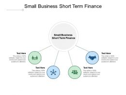 Small Business Short Term Finance Ppt Powerpoint Presentation Show Icon Cpb