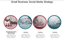 Small Business Social Media Strategy Ppt Powerpoint Presentation Infographic Template Templates Cpb