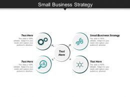 Small Business Strategy Ppt Slides Themes Cpb