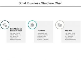 Small Business Structure Chart Ppt Powerpoint Presentation Pictures Background Image Cpb