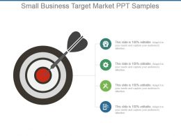 Small Business Target Market Ppt Samples