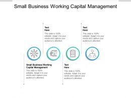Small Business Working Capital Management Ppt Powerpoint Presentation Ideas File Formats Cpb