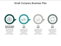 Small Company Business Plan Ppt Powerpoint Presentation Outline Layout Ideas Cpb