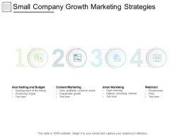 Small Company Growth Marketing Strategies