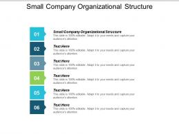 Small Company Organizational Structure Ppt Powerpoint Presentation Slides Maker Cpb