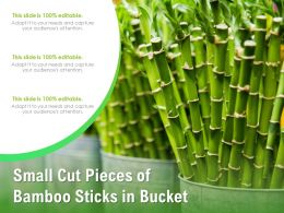 Small Cut Pieces Of Bamboo Sticks In Bucket