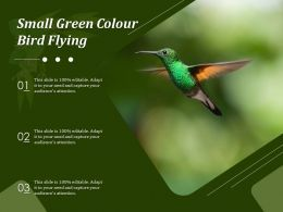 Small Green Colour Bird Flying