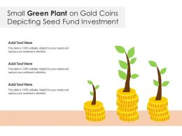 Small Green Plant On Gold Coins Depicting Seed Fund Investment