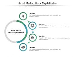 Small Market Stock Capitalization Ppt Powerpoint Presentation Outline Example Cpb