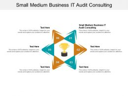 Small Medium Business IT Audit Consulting Ppt Powerpoint Presentation Cpb