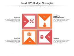 Small PPC Budget Strategies Ppt Powerpoint Presentation Gallery Format Ideas Cpb