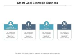 Smart Goal Examples Business Ppt Powerpoint Presentation File Example Cpb
