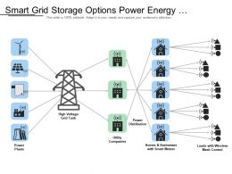 Smart Grid Storage Options Power Energy Generation Distribution Quality Efficiency Demand