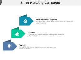Smart Marketing Campaigns Ppt Powerpoint Presentation File Display Cpb