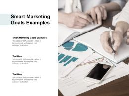Smart Marketing Goals Examples Ppt Powerpoint Presentation File Cpb