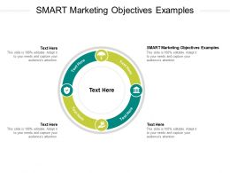 Smart Marketing Objectives Examples Ppt Powerpoint Presentation Show Smartart Cpb