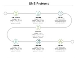 SME Problems Ppt Powerpoint Presentation Outline Infographics Cpb