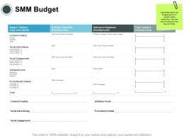 SMM Budget Expanses Ppt Powerpoint Presentation Pictures Design Ideas