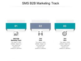 SMS B2B Marketing Track Ppt Powerpoint Presentation Summary Vector