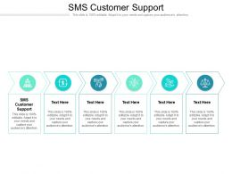 SMS Customer Support Ppt Powerpoint Presentation Show Example Topics Cpb