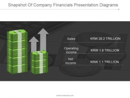 Snapshot Of Company Financials Presentation Diagrams