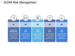 SOAR Risk Management Ppt Powerpoint Presentation Visual Aids Files Cpb