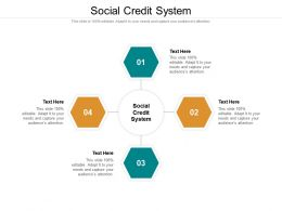 Social Credit System Ppt Powerpoint Presentation Ideas Portrait Cpb