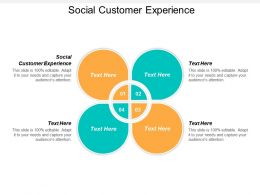 Social Customer Experience Ppt Powerpoint Presentation Portfolio Topics Cpb