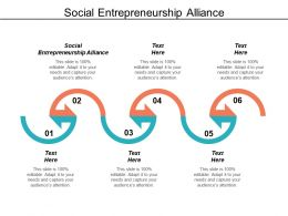Social Entrepreneurship Alliance Ppt Powerpoint Presentation Infographic Template Sample Cpb