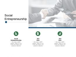 Social Entrepreneurship Ppt Powerpoint Presentation Infographics Inspiration Cpb