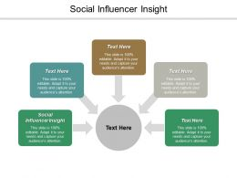 Social Influencer Insight Ppt Powerpoint Presentation Visual Aids Diagrams Cpb