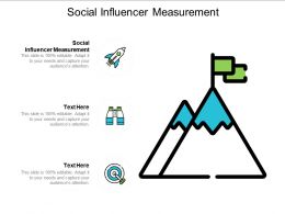 Social Influencer Measurement Ppt Powerpoint Presentation Infographic Template Slides Cpb