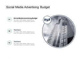 Social Media Advertising Budget Ppt Powerpoint Presentation Model Structure Cpb