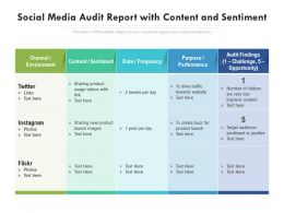 Social Media Audit Report With Content And Sentiment