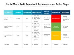 Social Media Audit Report With Performance And Action Steps