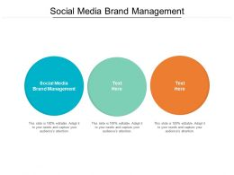 Social Media Brand Management Ppt Powerpoint Presentation Layouts Samples Cpb