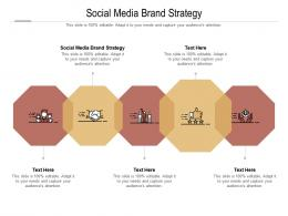 Social Media Brand Strategy Ppt Powerpoint Presentation Show Influencers Cpb