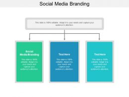 Social Media Branding Ppt Powerpoint Presentation Pictures Graphics Tutorials Cpb