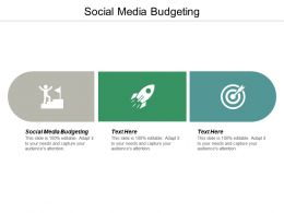 Social Media Budgeting Ppt Powerpoint Presentation Infographics Sample Cpb