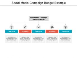 Social Media Campaign Budget Example Ppt Powerpoint Presentation Show Background Cpb