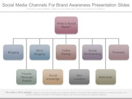 Social Media Channels For Brand Awareness Presentation Slides