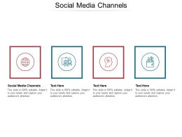 Social Media Channels Ppt Powerpoint Presentation Model File Formats Cpb