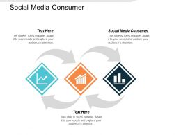 Social Media Consumer Ppt Powerpoint Presentation Pictures Inspiration Cpb
