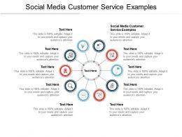 Social Media Customer Service Examples Ppt Powerpoint Presentation Gallery Design Cpb