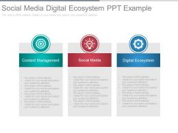 Social Media Digital Ecosystem Ppt Example