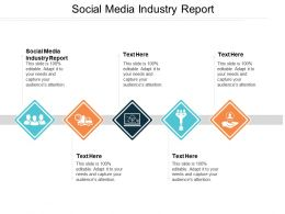 Social Media Industry Report Ppt Powerpoint Presentation Gallery Background Images Cpb