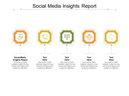 Social Media Insights Report Ppt Powerpoint Presentation Styles Display Cpb