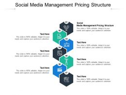 Social Media Management Pricing Structure Ppt Powerpoint Presentation Gallery Display Cpb